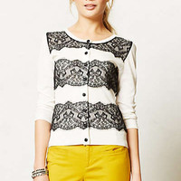 Lace Ruled Cardigan