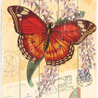 Natural Wonders Butterfly Vintage Wood Sign