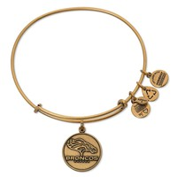 Denver Broncos Logo Charm Bangle