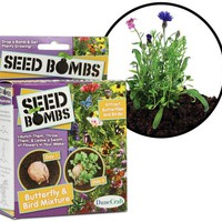 Seed Bombs Throw and Grow Plants - Butterfly & Birds