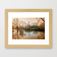 TREE - FLECTION 2 Framed Art Print by Catspaws