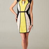 COLOR BLOCK BODYCON MESH DRESS