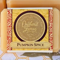 Pumpkin Spice Soap// Moisturizing Facial Soap// Gentle Organic Soap