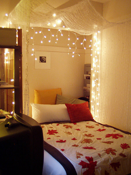 Lighted Bed Canopy