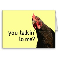 Funny Attitude Chicken - you talkin to me?