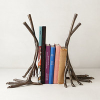 Ornithology Bookends