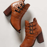 Chaparral Booties