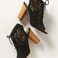 Sivan Cutwork Shooties