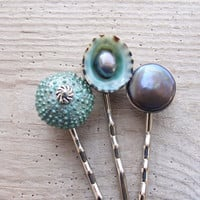 Teal Sea Urchin Bobby Hair Pins - Sea urchin, Pearls and Shell