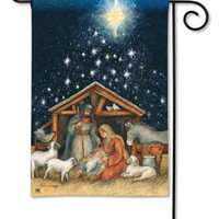 Holy Night Garden Flag