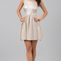 Short Sleeveless Metallic Dress