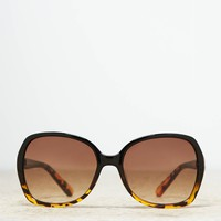 AEO Women's Ombre Tortoise Shell Sunglasses (Black)