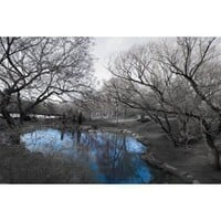 Isack Kousnsky-Central Park in Black and White with Blue Pond, Photography Poster Print, 24 by 36-Inch