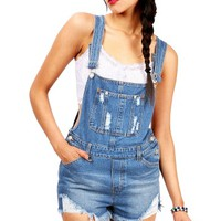 Day Out Overalls | Denim Overalls at pinkice.com