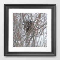 Home amoung the berries  Framed Art Print by Laura Santeler