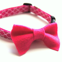 Pink Dog Bow and Collar Combo