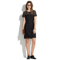Night Lace Sheath