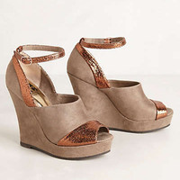 Joni Wedges