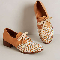 Pinwheel Oxfords