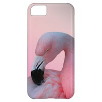 Pink Flamingo iPhone 5C Case