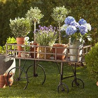 Metal Push Cart | Pottery Barn