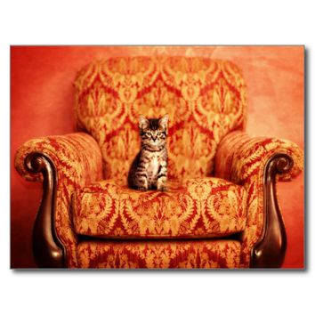 Cute Kitten Sitting on A Big Chair Postcard