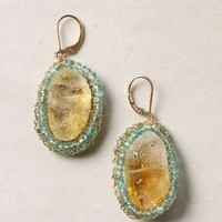 Solar Halo Earrings - Anthropologie.com