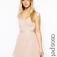 ASOS PETITE Exclusive Eyelash Lace Skater Dress -