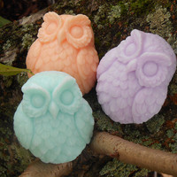 Adorable Owl Soap - Great Guest Soap - Stocking Stuffer - Party Favor - Shower Favor - Wedding Favor - Owl Enthusiast