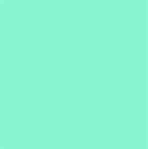 the color mint green from neiu edu
