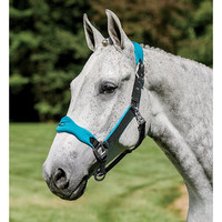 Lami-Cell Fleece Lined Halter | Dover Saddlery