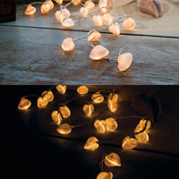 Sealites Seashell String Lights