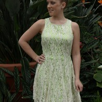 Lime and Lace Dress
