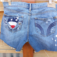 American Flag Jean Shorts - Hollister Brand Denim - Size 5 - Distressed Look