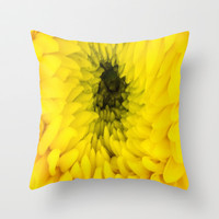 Fluffy Yellow Chrysanthemum Close-up  Throw Pillow by DaddyDan