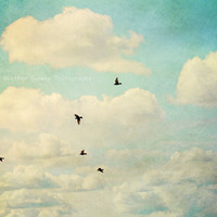 Birds flying Summer Sky Vintage style mint by HConwayPhotography