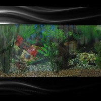 Wall Mounted Aquariums - Opulentitems.com