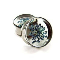 Blue Queen Anne's Lace Real Flower Plugs - 3/4 Inch - 19mm - Sold As a Pair
