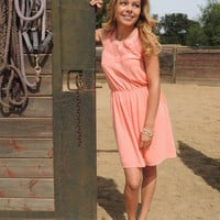 Cambria Peach Dress - VIRGINIA FIELDS
