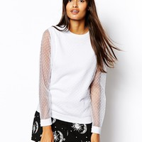 Sheer Sweater With Spot Sleeve