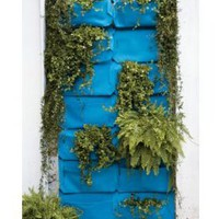 woolly pocket outdoor wall planter