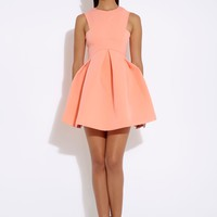 Broadwalk Desert Flower Skater Mini Dress