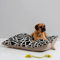 Nick Nelson Frenetic Pet Bed