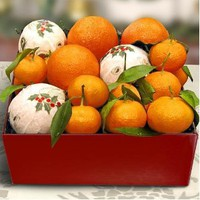 Citrus Duet Fruit Gift Box