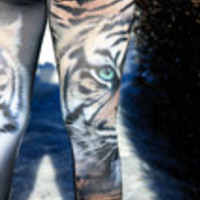 Carrie's Closet - Black Tiger Green Eye Leggings