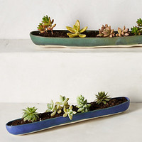 Canoe Planter by Judy Jackson
