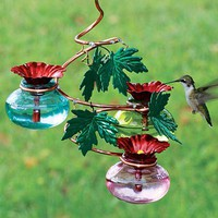 Vine Hummingbird Feeder - Plow  Hearth