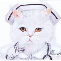 Stupell Home Nurse White Cat Hanger