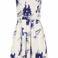 Blue Lilly Skater Dress