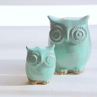 owl home decor in Mint julip by claylicious on Etsy